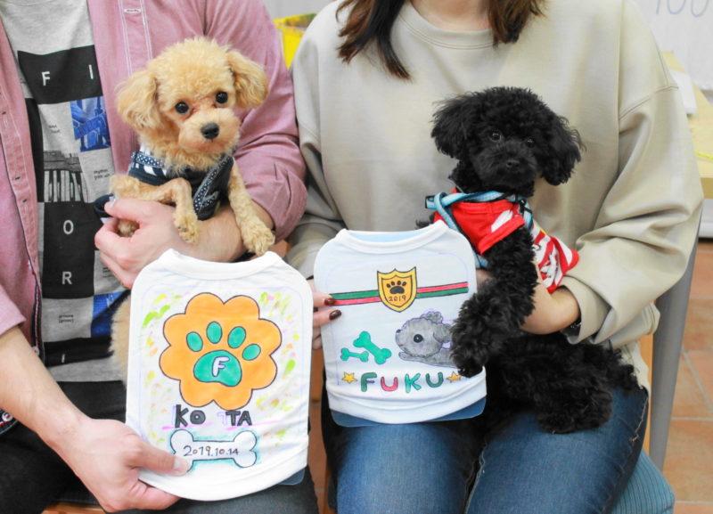 トイプードル、KOTAちゃん、FUKUちゃんの手描きワンコTシャツ
